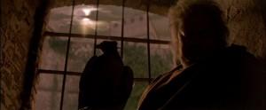 Ladyhawke Richard Donner con Michelle Pfeiffer, Rutger Hauer, Matthew Broderick, Leo McKern, John Wood, Alfred Molina streaming 62 Ladyhawke frasi dialoghi e citazioni