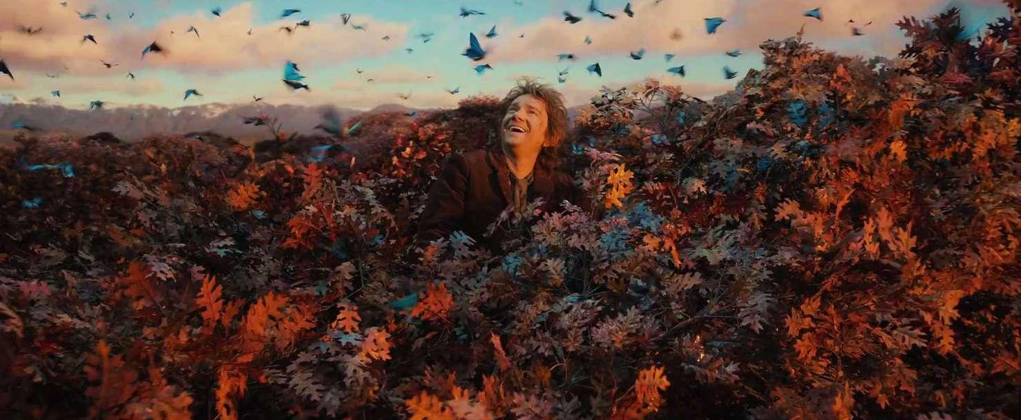 I luoghi della Terra di Mezzo Lo Hobbit - La desolazione di Smaug di Peter Jackson con Ian McKellen, Martin Freeman, Richard Armitage, Ken Stott, Evangeline Lilly, Cate Blanchett streaming 30