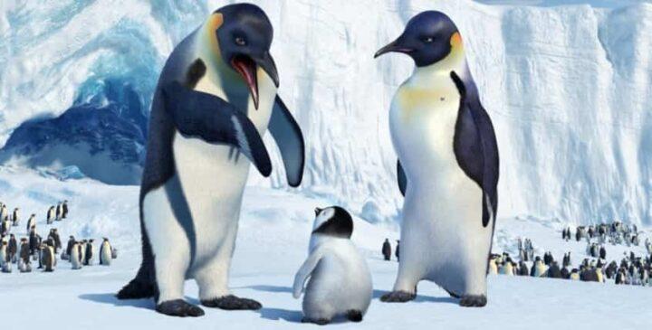 Happy Feet, 2006, George Miller, Mambo, pinguini