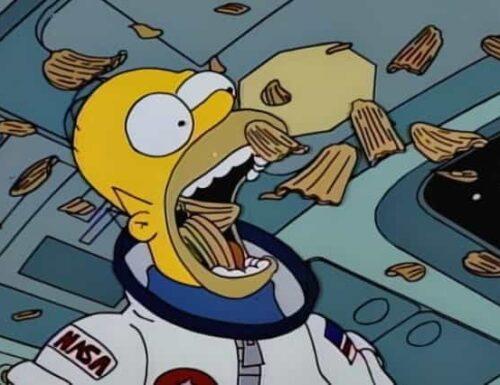 I Simpson quinta stagione frasi e citazioni